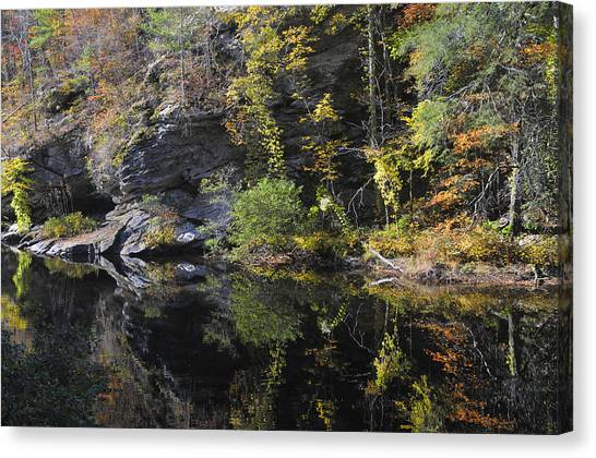 Bald River Autumn Reflection Canvas Print by Darrell Young