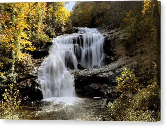 Bald River Falls In Autumn Canvas Print by Darrell Young