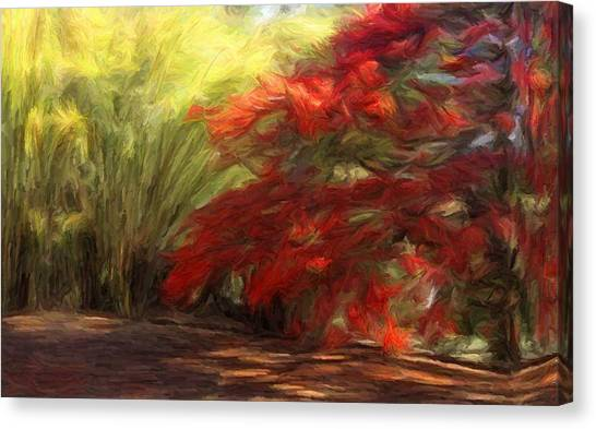 Bamboo And The Flamboyant Canvas Print
