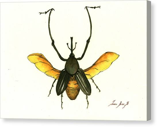 Insects Canvas Print - Bamboo Beetle by Juan Bosco