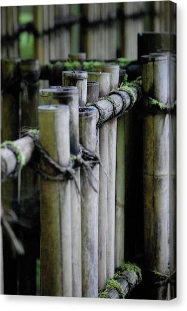 Bamboo Fence Canvas Print by Samantha Kimble