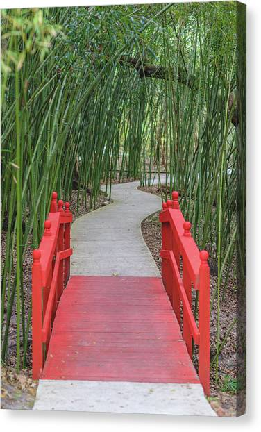 Canvas Print featuring the photograph Bamboo Path Through A Red Bridge by Raphael Lopez