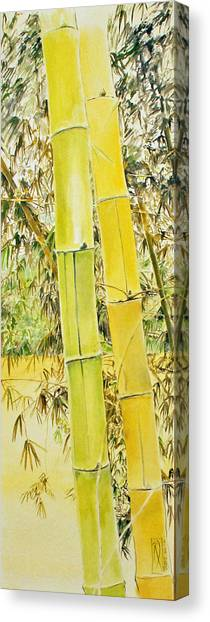 Bamboo Canvas Print by Rainer Jacob
