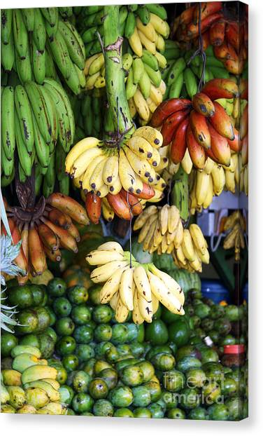Produce Stands Canvas Print - Banana Display. by Jane Rix