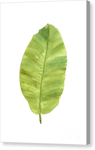 Banana Tree Canvas Print - Banana Palm Tree Leaf Watercolor Painting Abstract Leaves Art Print, Banana Illustration by Joanna Szmerdt