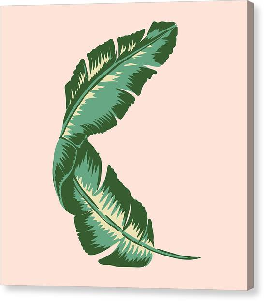 Vintage Canvas Print - Banana Leaf Square Print by Lauren Amelia Hughes