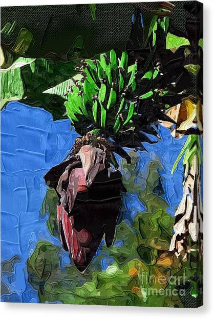 Banana Tree Canvas Print - Bananas Bananas Oh I Love Bananas by Deborah Selib-Haig DMacq