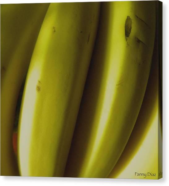 Bananas Canvas Print by Fanny Diaz