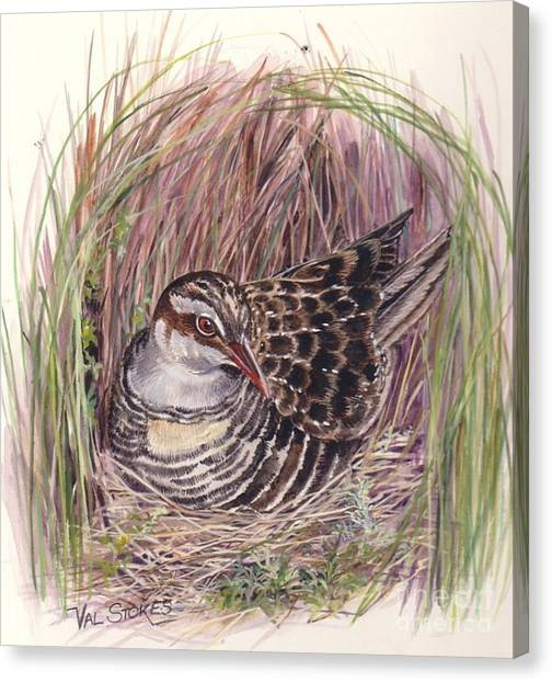 Banded Rail Canvas Print by Val Stokes