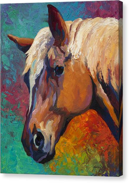 Rodeos Canvas Print - Bandit by Marion Rose