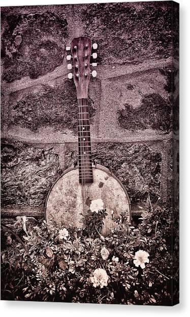 Mandolins Canvas Print - Banjo Mandolin On Garden Wall by Bill Cannon