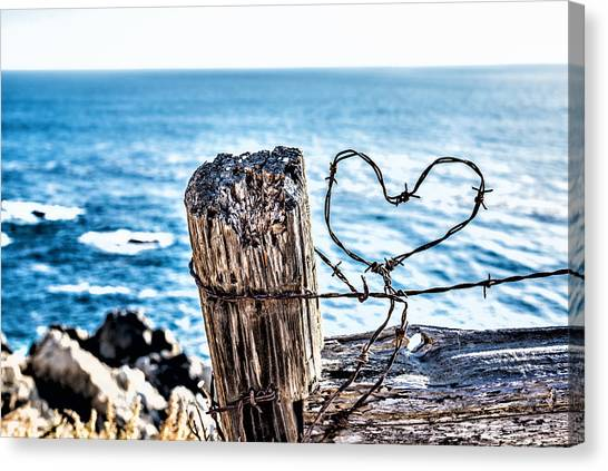Barb Wire Heart Canvas Print