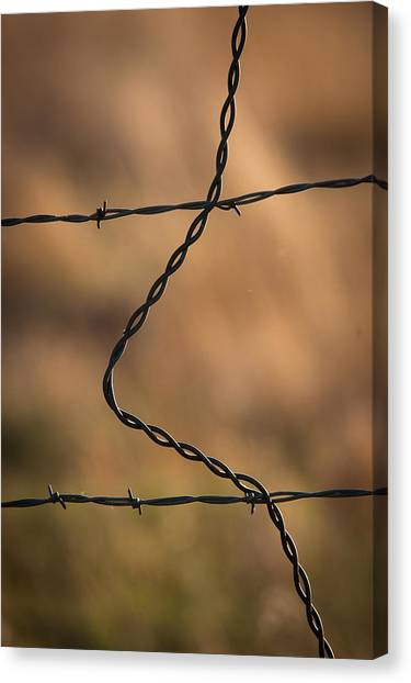 Barbed And Bent Fence Canvas Print