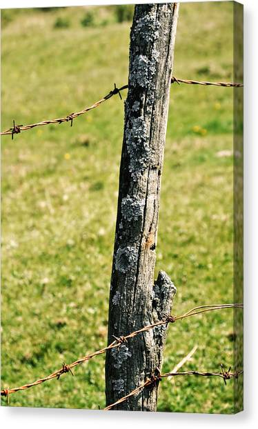Barbed Fence Post Canvas Print by JAMART Photography