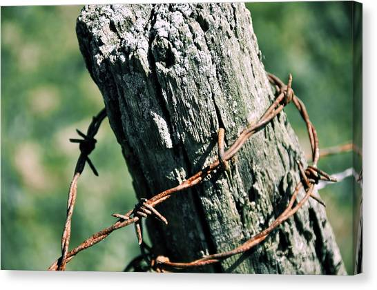 Barbed Wire Canvas Print by JAMART Photography