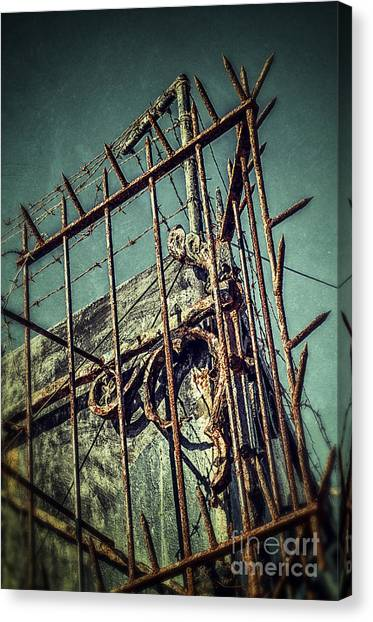 Border Wall Canvas Print - Barbed Wire On Wall by Carlos Caetano
