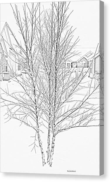 Bare Naked Tree Canvas Print