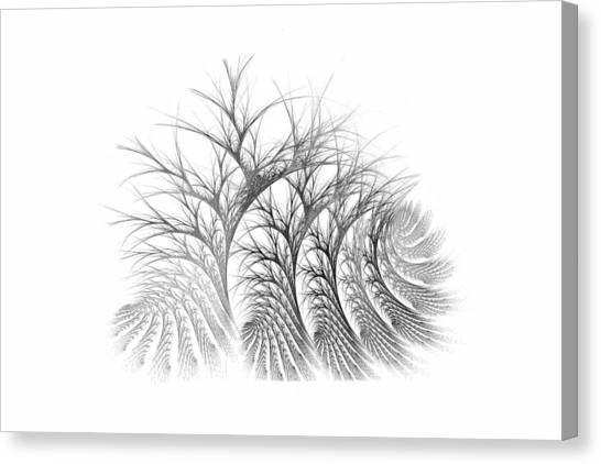 Bare Trees Daylight Canvas Print