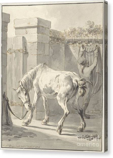 Bareback Canvas Print - Bareback Horse By The Bridle Attached To A Pole by Celestial Images