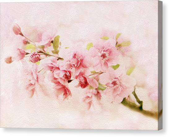 Tree Blossoms Canvas Print - Barely Blush by Jessica Jenney
