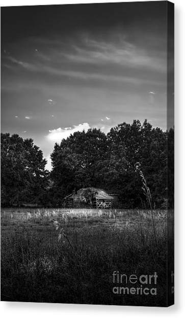 Tractors Canvas Print - Barn And Palmetto-bw by Marvin Spates