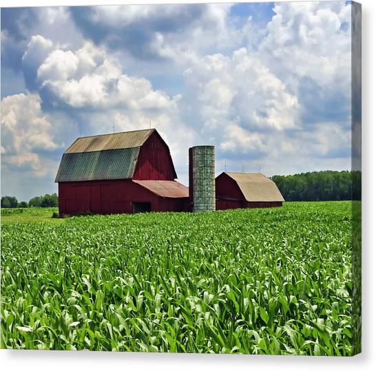 Barn In The Corn Canvas Print