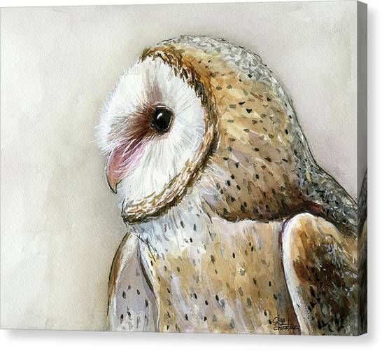 Large Birds Canvas Print - Barn Owl Watercolor by Olga Shvartsur