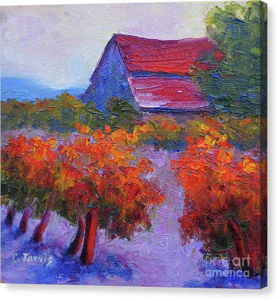 Barn Vineyard Autumn Canvas Print