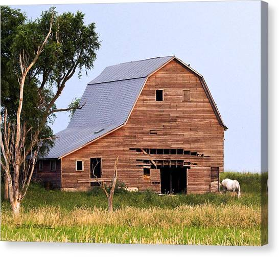 Canvas Print - Barn With White Horse by Don Durfee