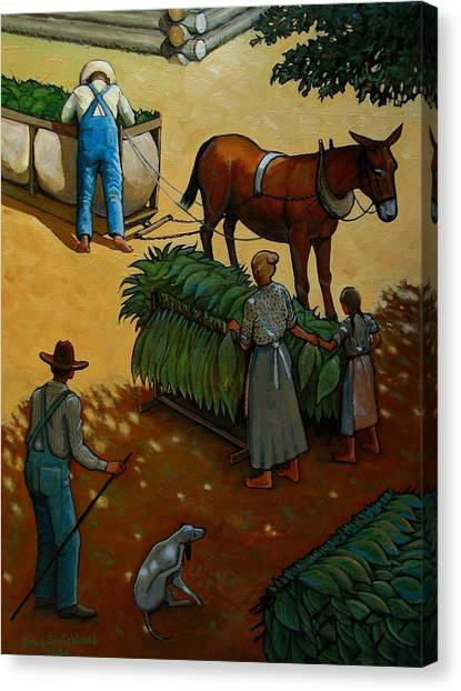 Barnin Tobacco Canvas Print by Doug Strickland