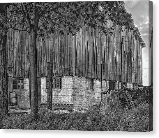 Rain Barrel Canvas Print - Barnyard Bw by Steve Harrington