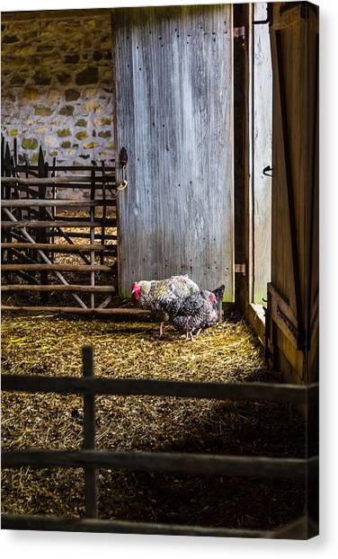 Barnyard Friends Canvas Print