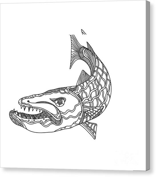 Barracuda Canvas Prints Page 4 Of 12