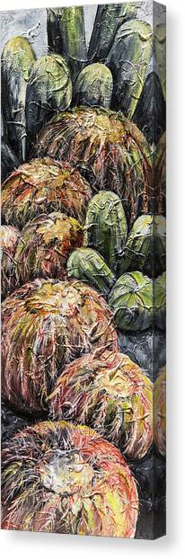 Barrel Cactus #1 Canvas Print
