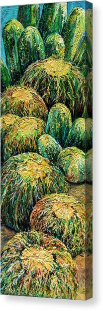 Barrel Cactus #2 Canvas Print