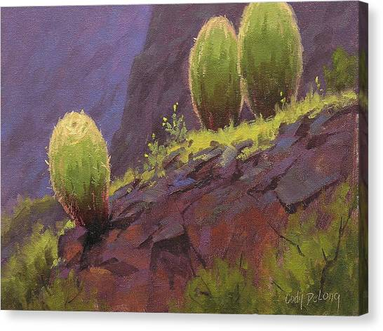 Canyon Canvas Print - Barrels by Cody DeLong