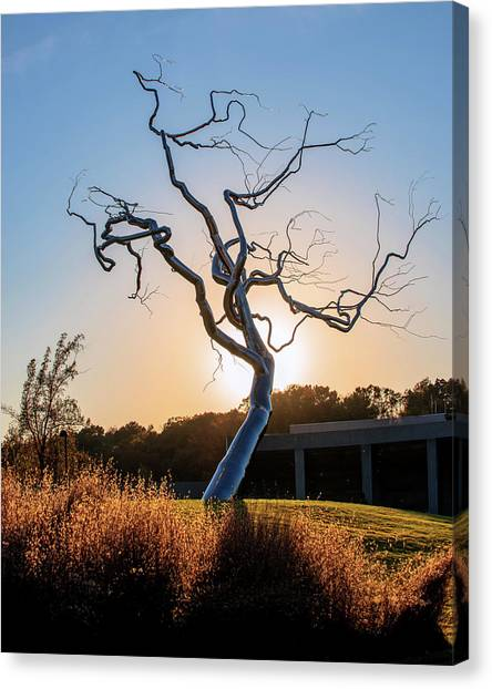 Northwest Canvas Print - Barren Light - Crystal Bridges Museum Of American Art by Gregory Ballos