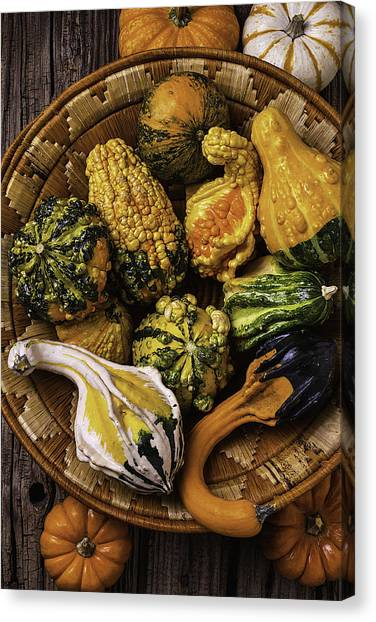 Gourds Canvas Print - Basket Full Of Autumn Gourds by Garry Gay