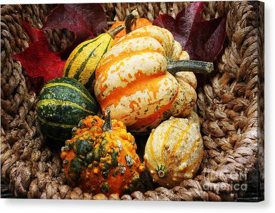 Basket Of Pumpkins Canvas Print