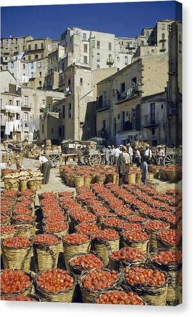 Bushel Baskets Canvas Print - Baskets Filled With Tomatoes Stand by Luis Marden