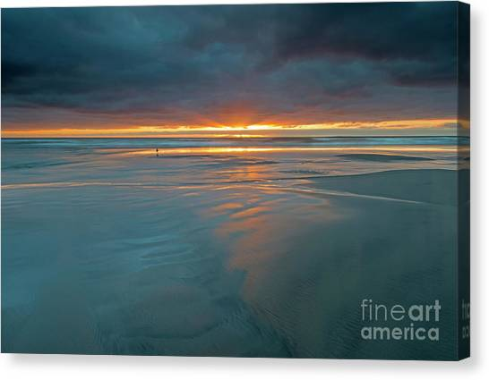 Gull Canvas Print - Basking In The Light by Mike Dawson