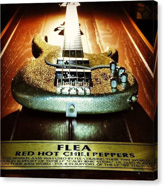 Fleas Canvas Print - Bass Hit. #flea #bass #guitar by Matthew Gilbert