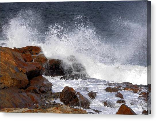 Bass Rocks Canvas Print