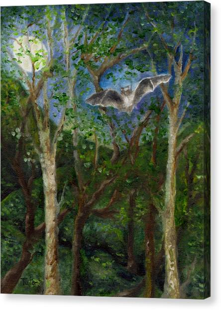 Bat Medicine Canvas Print