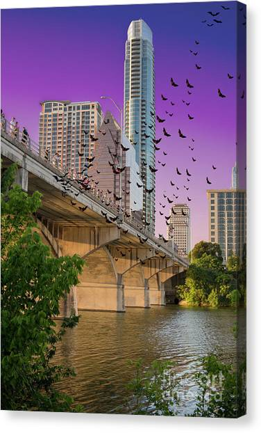 Austin Texas Canvas Print - Bats Over Austin by Juli Scalzi