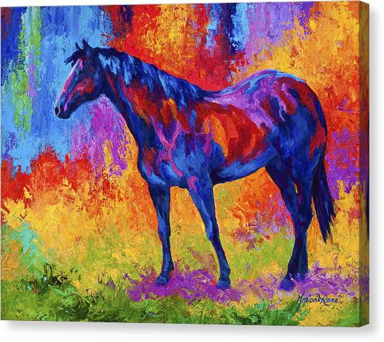 Rodeos Canvas Print - Bay Mare II by Marion Rose
