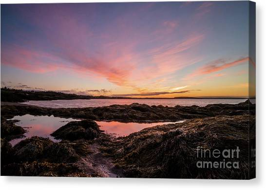 New Brunswick Canvas Print - Bay Of Fundy by DiFigiano Photography