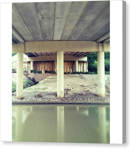 Bayous Canvas Print - Bayou Life  #houston #houstoncity by Roslyn Igbani