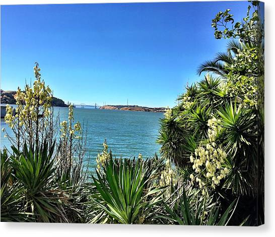 Bayview Canvas Print