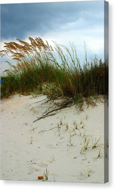 Beach   Grass   And  Sky Canvas Print
